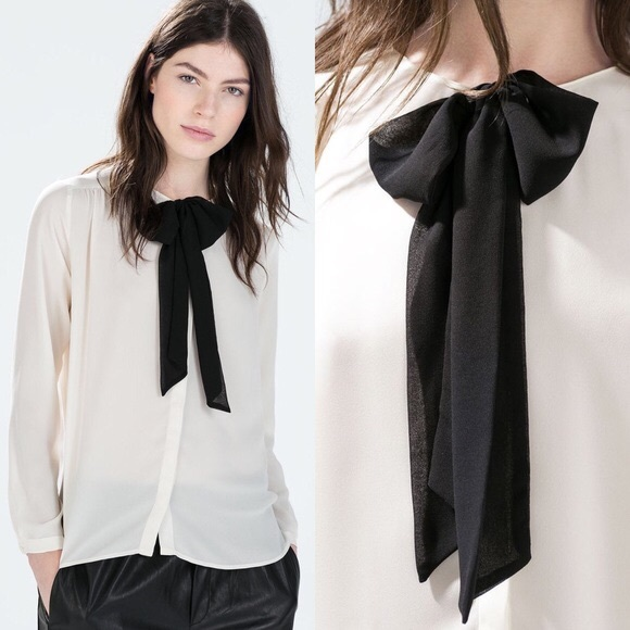 bf33ec5ffcf08c Zara black and white sheer tie neck blouse. M_5a5defac50687cc75f179390